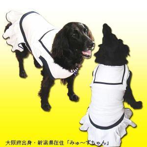 犬服 ドッグウェア 2Lサイズ(大型犬) DOGタンクトップ セーラー・プリーツ ホワイト ポイント10倍 メール便送料無料(代金引換別途送料600円〜) mamav