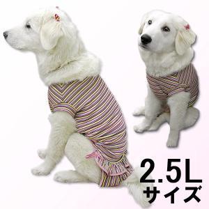 犬服 ドッグウェア 犬 2.5Lサイズ(大型犬) DOGフリル付タンクトップ カラフルボーダー タンクトップ メール便で送料無料(代引き不可)|mamav