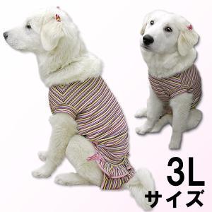 犬服 ドッグウェア 犬 3Lサイズ(超大型犬) DOGフリル付タンクトップ カラフルボーダー タンクトップ レターパックで送料無料(代引き不可)|mamav