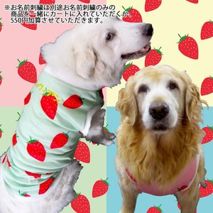 犬服 ドッグウェア 犬のタンクトップ Lサイズ(中型犬) DOGタンクトップ オリジナルプリント いちごちゃん メール便で送料無料(代金引換別途送料600円〜)|mamav