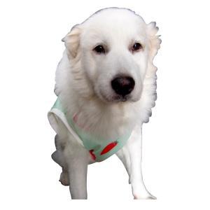 犬服 ドッグウェア 犬のタンクトップ M/Lサイズ(中型犬) DOGタンクトップ オリジナルプリント いちごちゃん メール便で送料無料(代金引換別途送料600円〜)|mamav|07