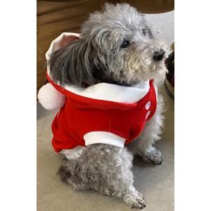 犬服 ドッグウェア クリスマス M/Lサイズ(小型犬)DOGタンクトップ サンタ服!フード付 ボンボン付 レターパックで送料無料(代引き不可)|mamav