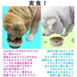 犬用レトルトフード 鶏むね肉レトルト3個セット 国産の鶏むね肉100% メール便送料無料(代引き不可)|mamav|02