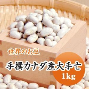 豆 白いんげん豆 大手亡 カナダ産 1kg