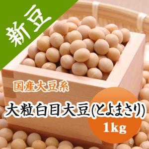 豆 大豆 大粒白目大豆 とよまさり 北海道産 味噌 令和1年産 1kg