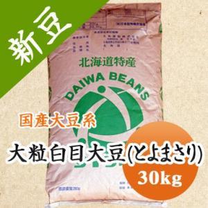 豆 大豆 送料無料 大粒白目大豆 とよまさり 北海道産 味噌 令和1年産 30kg 業務用
