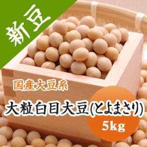 豆 大豆 大粒白目大豆 とよまさり 北海道産 味噌 令和1年産 5kg 業務用