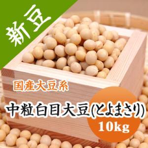 豆 大豆 中粒白目大豆 とよまさり 北海道産 味噌 令和1年産 10kg 業務用