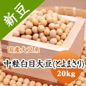 豆 大豆 中粒白目大豆 とよまさり 北海道産 送料無料 味噌 令和1年産 20kg 業務用