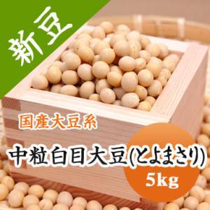 豆 大豆 中粒白目大豆 とよまさり 北海道産 味噌 令和1年産 5kg 業務用