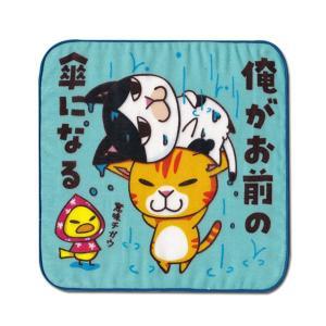 4重ガーゼ まめ猫ハンドタオル 俺がお前の傘になる HT-11|mamekou-boo