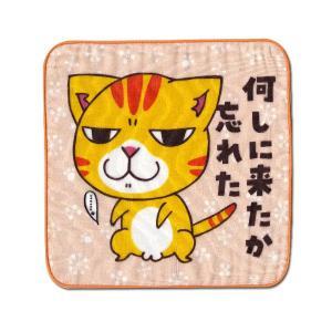 4重ガーゼ まめ猫ハンドタオル 何しに来たか忘れた HT-14|mamekou-boo