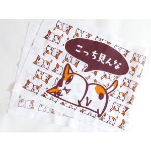 ネコ手ぬぐい「こっち見んな」カラー TN-2|mamekou-boo