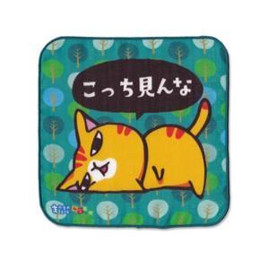 4重ガーゼ まめ猫ハンドタオル こっち見んな HT-2|mamekou-boo