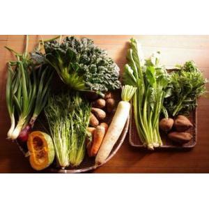 生産者:豆に暮らす野の暮らし研究所 豆野仁昭、さとこ  7-11品の大盛りセット、農薬・除草剤・化学...