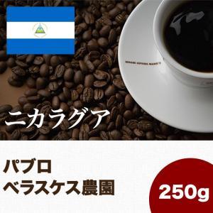 ニカラグア パブロ ベラスケス 250g スペシャルティコーヒー専門店 マメーズ焙煎工房|mames