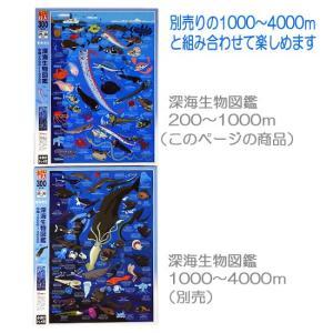 深海魚 図鑑 グッズ ジグソーパズル アポロ社...の詳細画像3