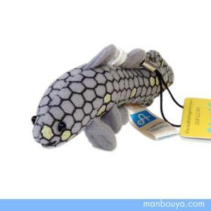 古代 魚シーラカンスのぬいぐるみ  A-SHOW(栄商) 携帯ストラップ シーラカンス 10cm  【ゆうパケット送料166円発送可】 |manbouya