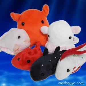 深海魚のぬいぐるみ セットA-SHOW メンダコ リュウグウノツカイ シーラカンス 小さな深海の仲間セット|manbouya