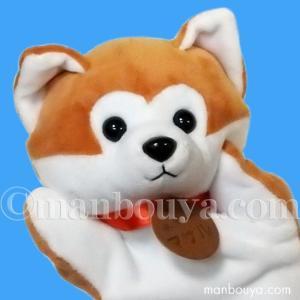 秋田犬保存会からフィギュアスケートのアリーナ・ザギトワ選手に贈られた あきたいぬ「マサル」をモデルに...
