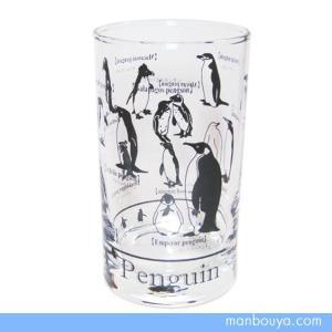 ペンギングッズ グラス/ガラス製コップ サンセラ工芸 ペンギン図鑑タンブラー|manbouya