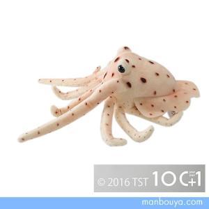イカのぬいぐるみ 水族館グッズ 雑貨 TST 太洋産業貿易 101シリーズ 烏賊 29cm まんぼう屋ドットコム|manbouya