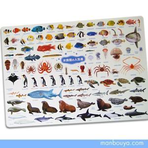 A4サイズのしたじき 海の生き物がいっぱい 図鑑タイプ下敷き 水族館の人気者 【ゆうパケット送料166円発送可】 まんぼう屋ドットコム|manbouya