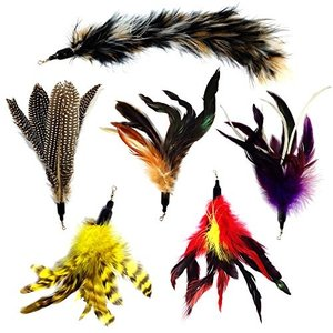 猫おもちゃ ネコ ねこ 100-1 Pet Fit For Life Multi Piece Replacement Feathers Pack Plus Bonus Soft Fur|maniacs-shop