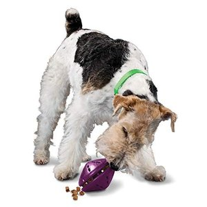 犬おもちゃ ドッグトイ トレーニング BB-TNT-M PetSafe Busy Buddy Twist 'n Treat Dispensing Dog T|maniacs-shop