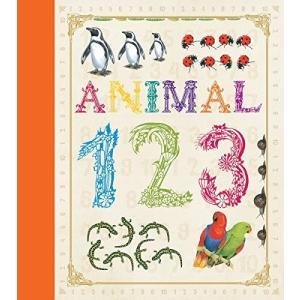 海外製絵本 知育 英語 colour illustrations Animal 123|maniacs-shop