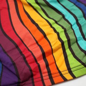 【M】サイズ 柔らかいマイクロジャージ 虹のメンズボクサーパンツ☆ドイツ製 MANSTORE(マンストア)☆M663☆Micro Pants Wave  Rainbow 男性下着 manifica 06