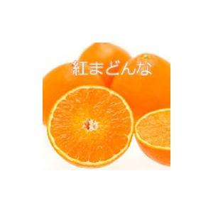 紅まどんな6個 あたご梨1個 詰合せ箱 mankasou