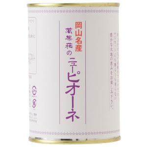 ニュー・ピオーネ缶詰 2缶|mankasou