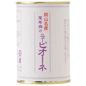 ニュー・ピオーネ缶詰 3缶|mankasou