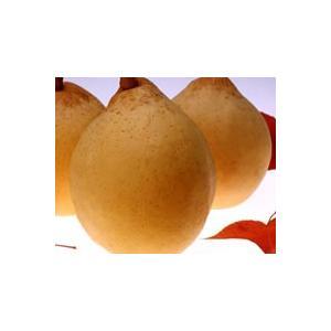 ヤーリー(支邪鴨梨)3個&清水白桃缶詰1個&マスカット缶詰1&ニュー・ピオーネ缶詰1缶|mankasou