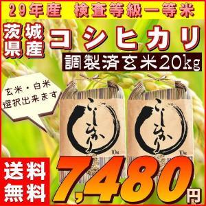 米 20kg コシヒカリ 玄米 お米 29年産 茨城県産 送...