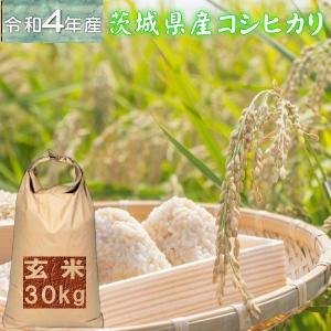 30kg コシヒカリ 玄米 お米 30年産 茨城県産 送料無料  『30年茨城県産コシヒカリ玄米30kg』|manmayarice