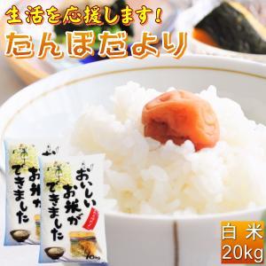 米 20kg お米 白米 安い (10kg×2袋) 訳あり ブレンド米 国内産 送料無料 『たんぼだより(白米10kg×2)』|manmayarice