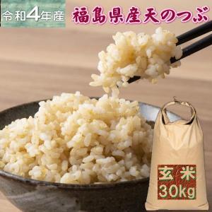 天のつぶ 30kg 玄米 福島県産 お米 30年産 送料無料  クーポン利用で10%OFF『30年福島県産天のつぶ玄米30kg』|manmayarice