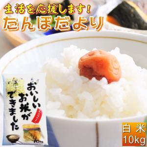 米 10kg  お米 白米 安い  訳あり ブレンド米  国内産 送料無料  『たんぼだより白米10kg』