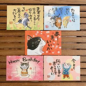 ポストカード 5枚セット(01) 猫 三毛猫 ぶち猫 おしゃれ猫 かわいい 糸島 送料無料【のび工房】|manpuku-kyusyu