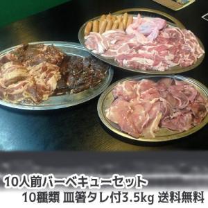 肉 牛肉 豚肉 鶏肉 焼肉セット 盛り バーベキュー ハラミ bbq 10人前 10種類 総重量3.5kgセット 商番819