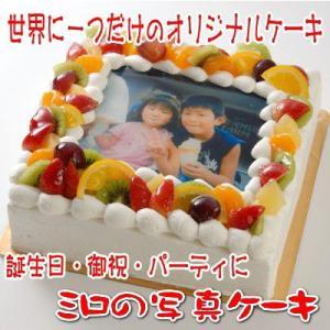 世界に一つだけのオリジナル写真ケーキ Lサイズ(22cm×2...
