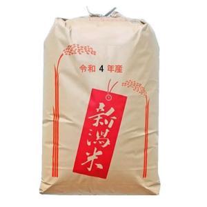 こがねもち 玄米30kg こがねもち 2等 新潟県産 最高級もち米 令和元年産  【事業所配送(個人宅不可)】【精米料無料】|manryo