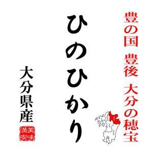 米 10kg ヒノヒカリ 大分県産 豊の国 豊後の穂宝  平成29年産|manryo