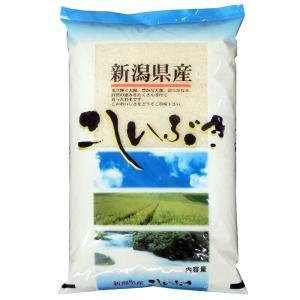 こしいぶき 米5kg 新潟県産 北陸 越後の米 令和元年産|manryo