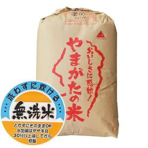 【無洗米】もち米 29年産山形県産ヒメノモチ 精米30kg|manryo