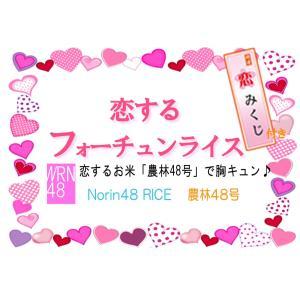 「恋するフォーチュンライス」 恋みくじ付300g 恋するお米「農林48号」で胸キュン♪|manryo