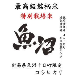 魚沼コシヒカリ 新米 米 10kg コシヒカリ 新潟県魚沼産 特別栽培米 特A米 JA十日町 平成29年産|manryo