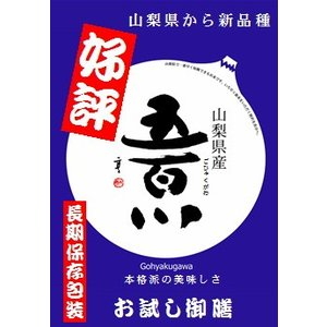 新ブランド米 30年産山梨県産「五百川」 900gパック manryo